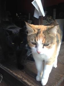 Nerino e Lola