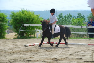 MAFALDA pony shetland