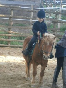 CARAMELLA pony shetland