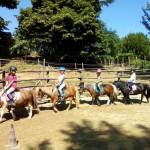 Corsi di equitazione tutto l'anno e altro…
