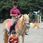 Ami i cavalli e gli animali come noi?