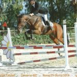 Rinviato per mal tempo lo Stage con il grande addestratore di cavalli Andrea Andreuzzi